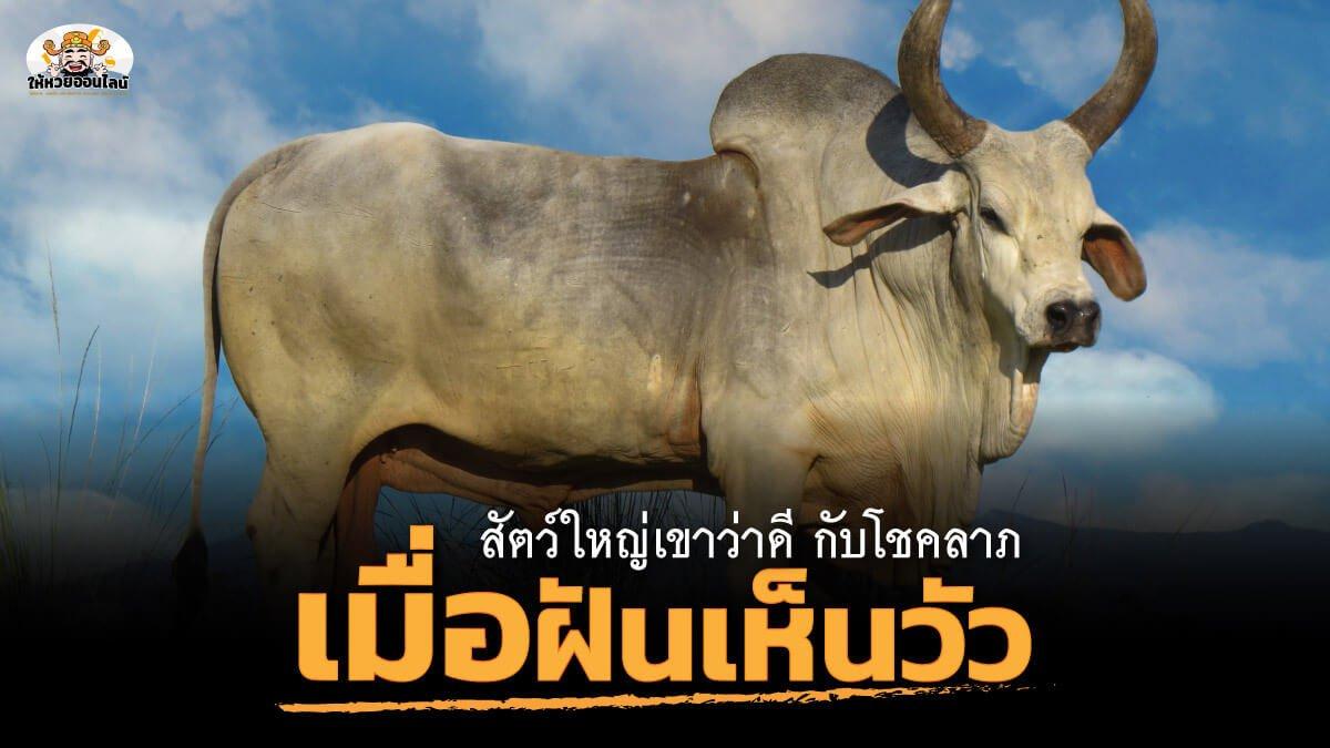 "feature-image_singlepost-สัตว์ใหญ่เขาว่าดี กับ โชคลาภ เลขเด็ดเมื่อฝันเห็น ""วัว"""