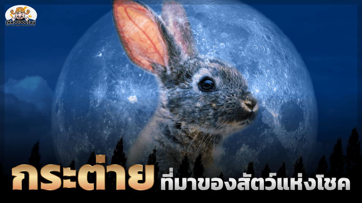 feature-image_singlepost-กระต่าย กับความเชื่อที่มาของสัตว์แห่งโชค