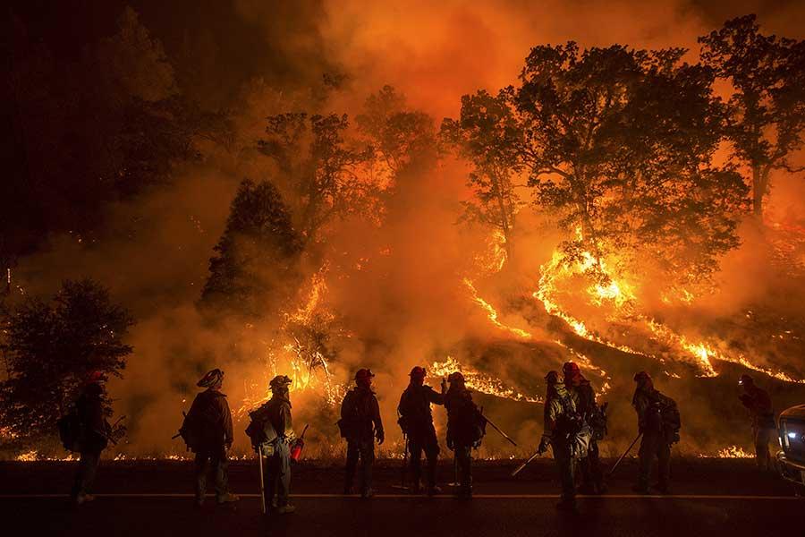 ฝันเห็นไฟไหม้ป่า