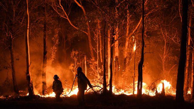 ฝันว่าไฟไหม้ป่า