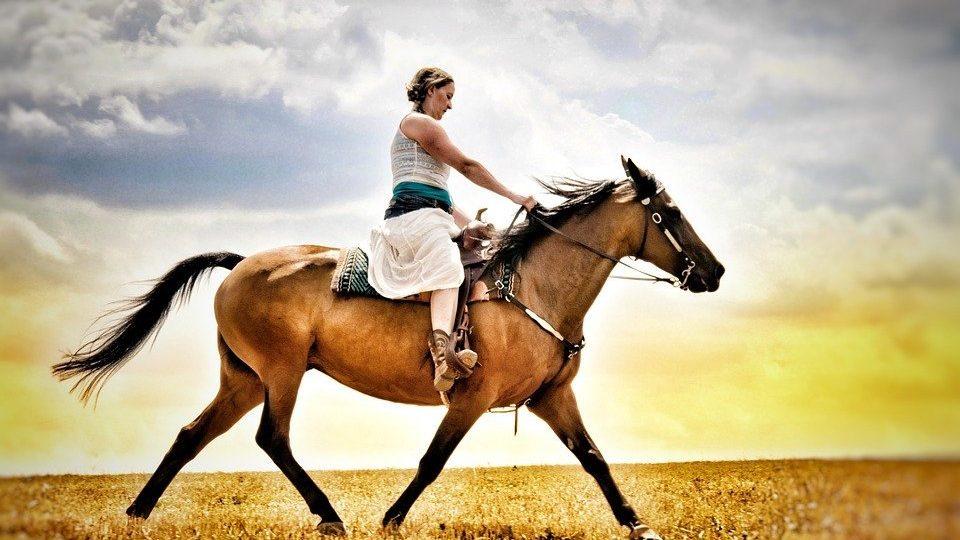 สาวขี่ม้า