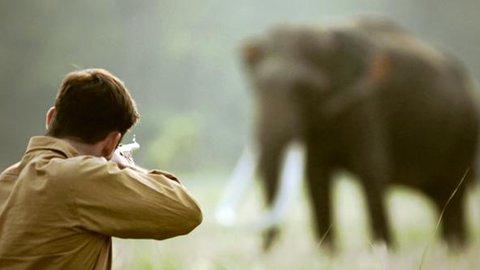 คนฆ่าช้าง